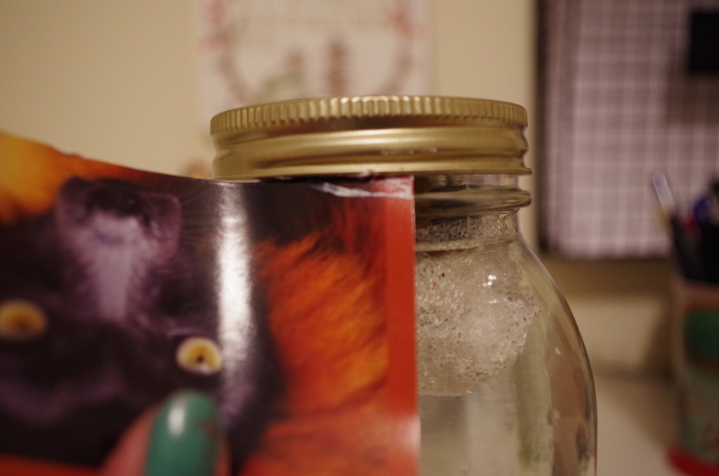 Screw on the Mason jar's outer lid and wipe away any excess sealant with a picture of a monkey because you forgot to bring in paper towels and you are the kind of person who has a picture of a monkey just lying around.