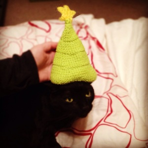 CAT CHRISTMAS HAT MAYBE NOW BUT LATER IN YOUR SLEEP YOU WILL DIE